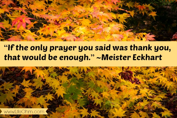 """If the only prayer you said was thank you, that would be enough."" ~Meister Eckhart"