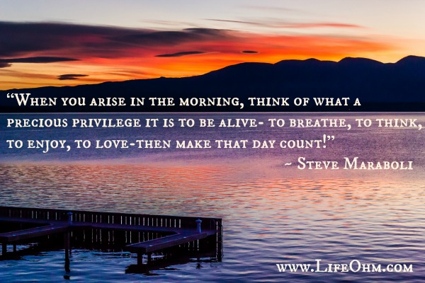 """When you arise in the morning, think of what a precious privilege it is to be alive- to breathe, to think, to enjoy, to love-then make that day count!"" ― Steve Maraboli"