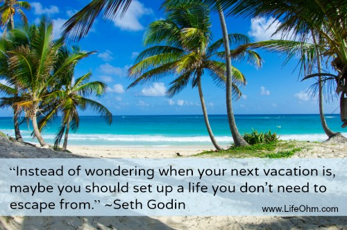 """Instead of wondering when your next vacation is, maybe you should set up a life you don't need to escape from."" ~Seth Godin"