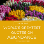 30 of the World's Greatest Quotes on Abundance to Help You Live a Richer Life
